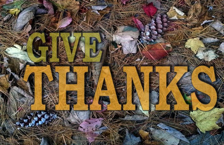 Express Your Thanks This Thanksgiving