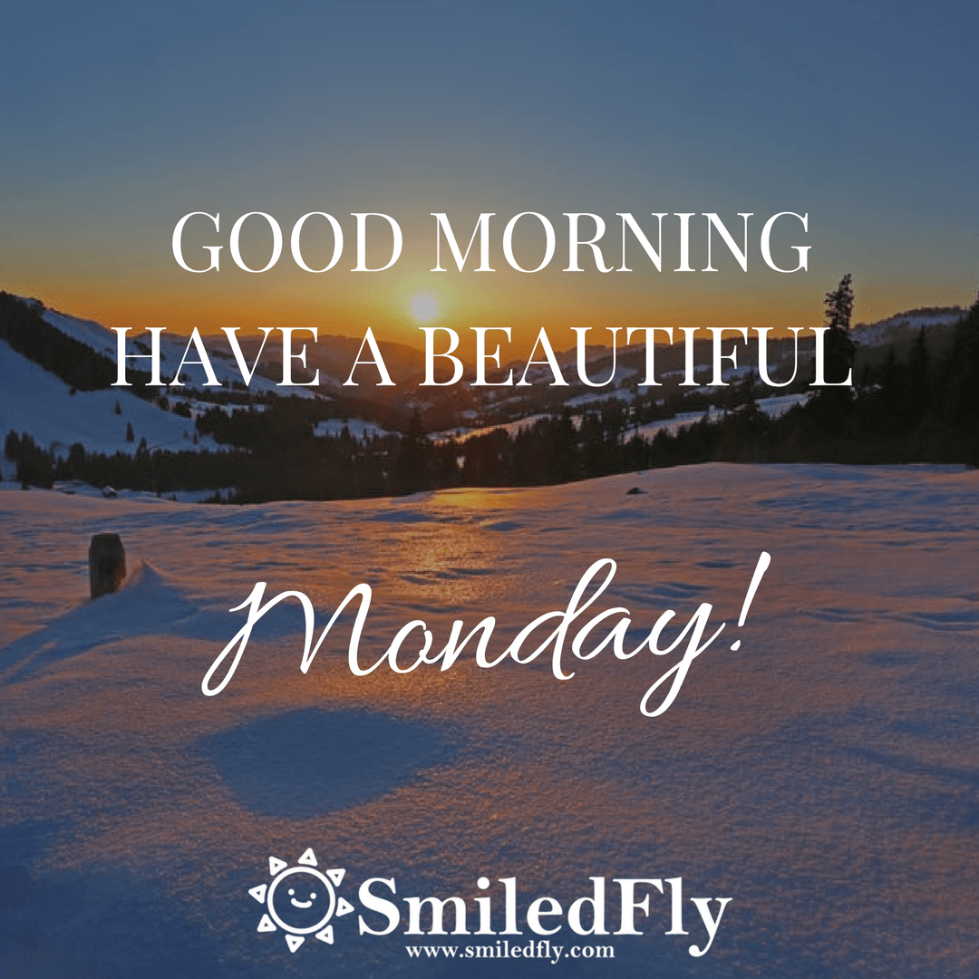 Monday Motivation Quotes and Sayings #49